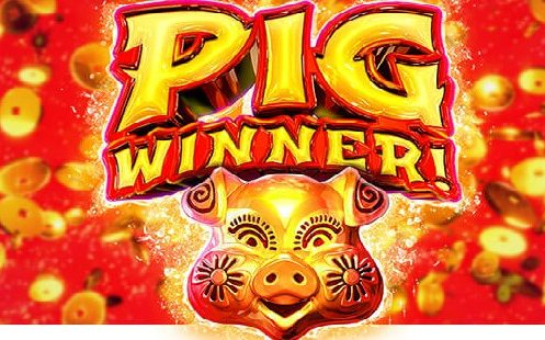 Pig Winner RTG Slot Review