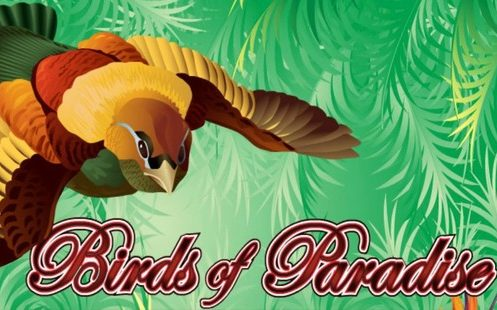 Birds of Paradise Slot Machine Review